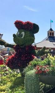 Acceptable Garden Mouse
